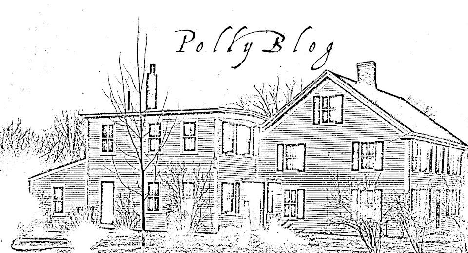 PollyBlog