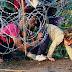 Hungría, sobrepasada por llegada de migrantes
