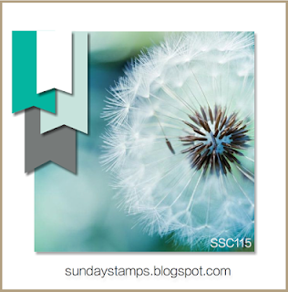http://sundaystamps.blogspot.ca/2015/12/ssc115-its-cool.html
