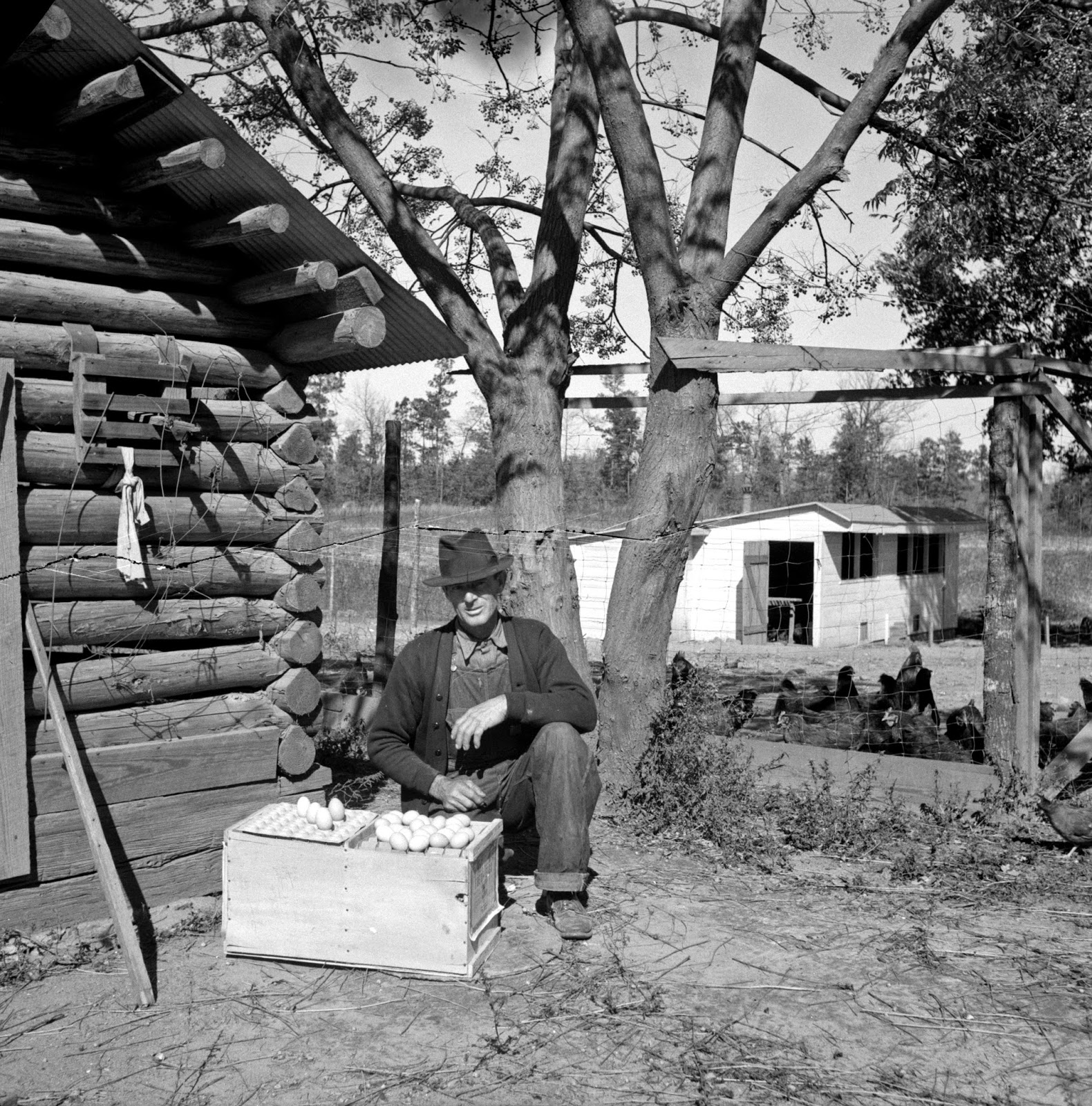 pine mountain valley personals While much farming in the pine mountain valley was on the sides of the  in  some of the personal narratives captured in letters, documents.