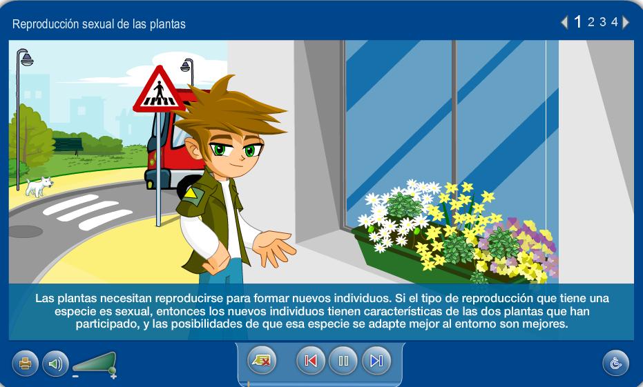 http://www.juntadeandalucia.es/averroes/carambolo/WEB%20JCLIC2/Agrega/Medio/Las%20plantas/contenido/cm07_oa04_es/index.html