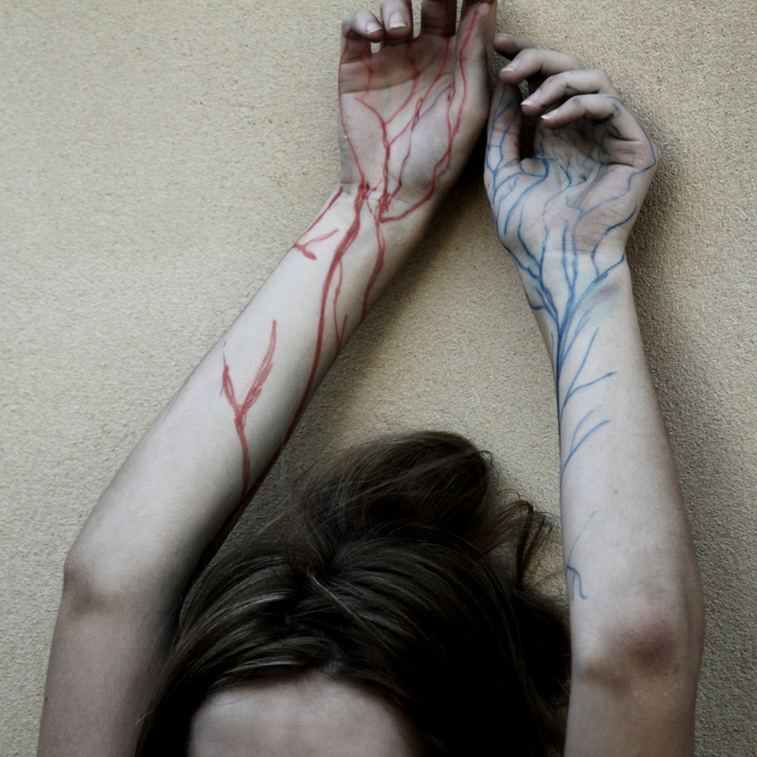 Veins by Amy Haslehurst