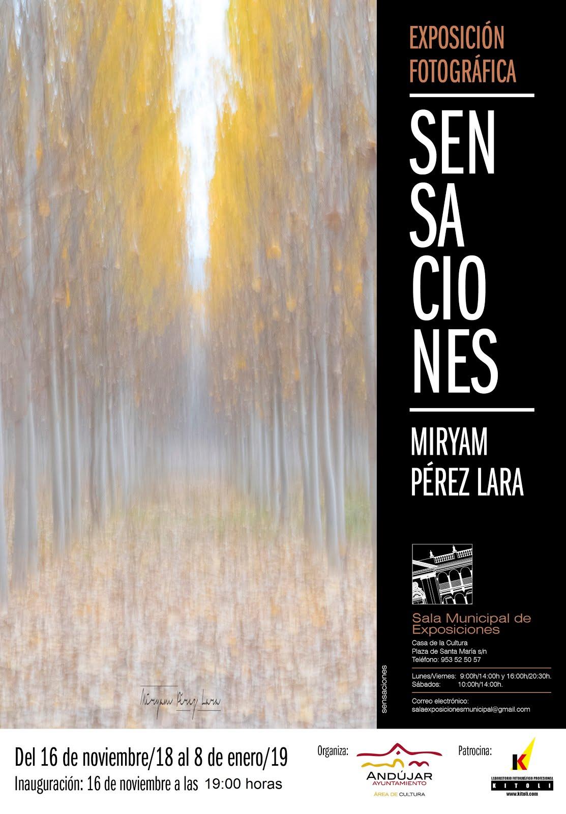 Exposición Miryam Pérez