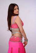 Sneha Ullal Glamorous in Pink Photo shoot-thumbnail-7