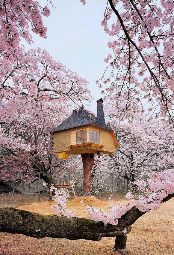 Casa de cerejeira – Bem Legaus