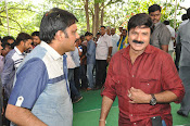 Dictator movie launch photos-thumbnail-15