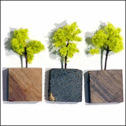 koelkastmagneetjes uit exotische soorten hout