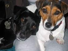 Bertie & Molly
