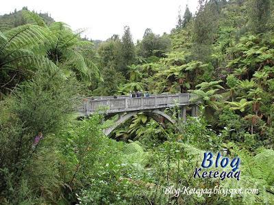 Jambatan Tidak Kemana-mana
