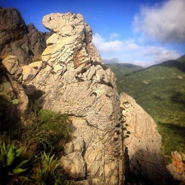 Una de las piedras con forma de un animal. ¿Será el espíritu de un dinosaurio reencarnado?