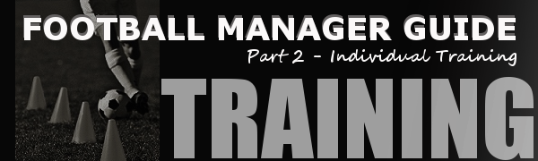 Football Manager Individual training