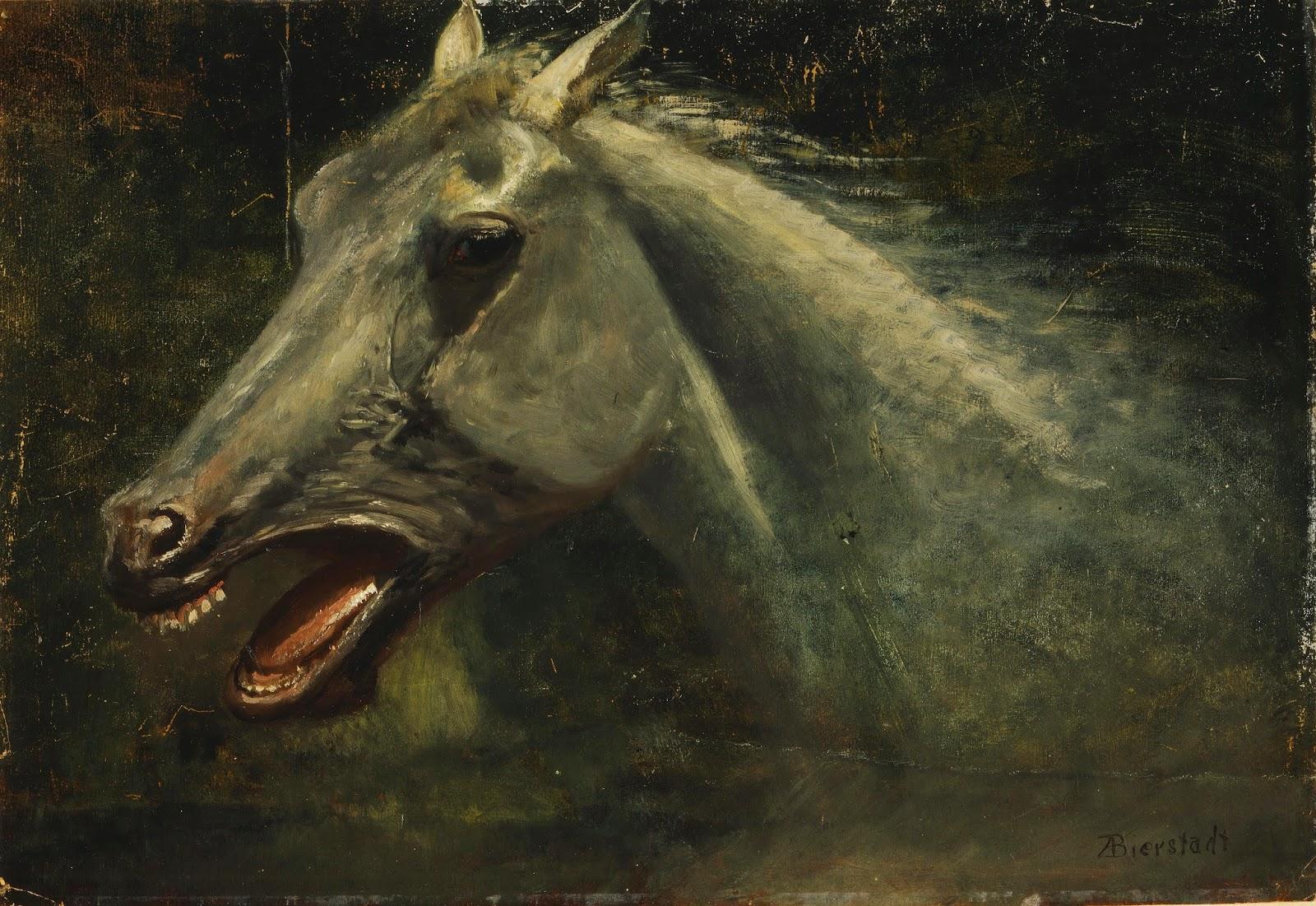 Albert Bierstadt, Fuentes, Instynkt pięknej Inez, Okres ochronny na czarownice, Carmaniola