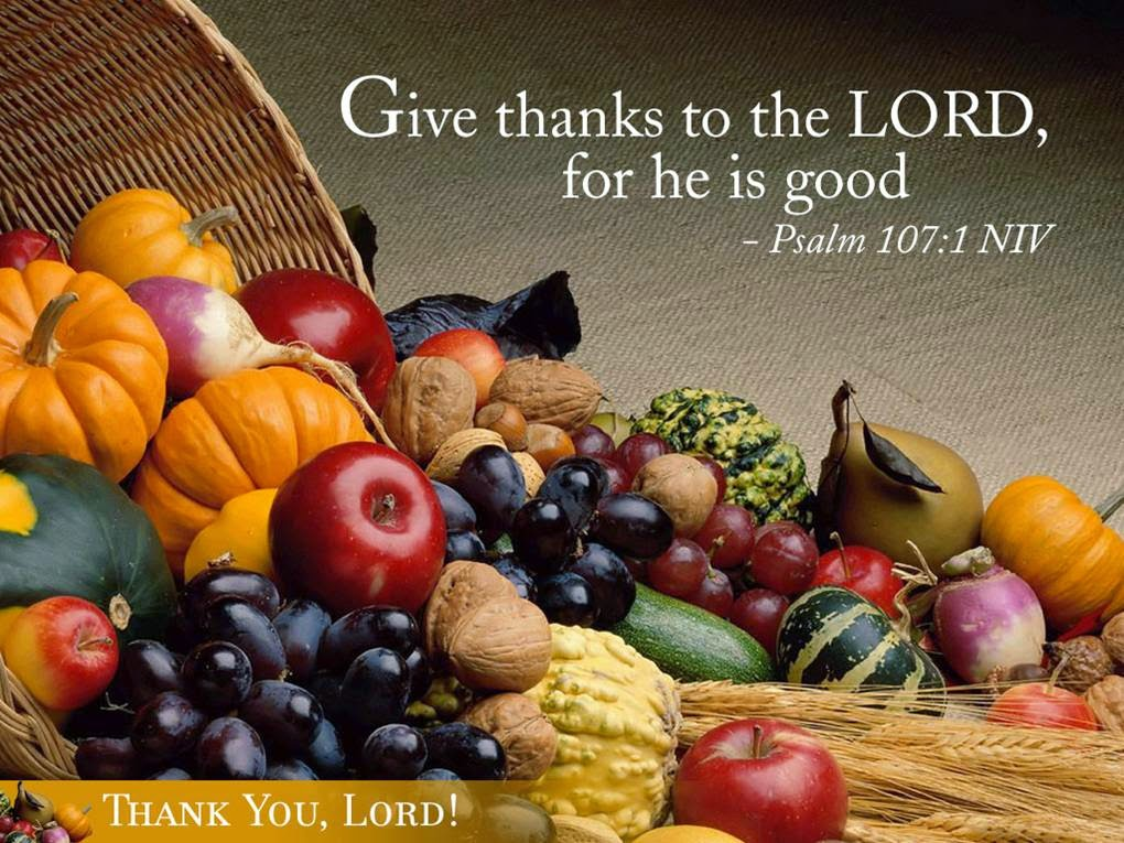http://www.fanpop.com/clubs/jesus/images/27062498/title/jesus-thanksgiving-photo