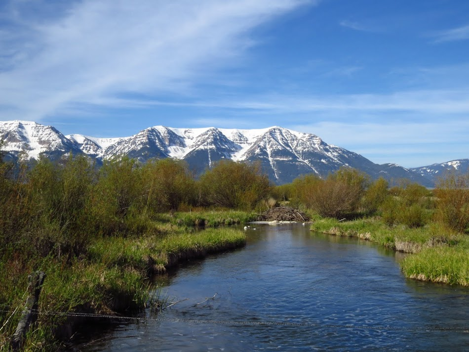 View of Centennial Mountains at Red Rock Lake NWR