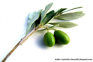 health_benefits_of_eating_olives_fruits-vegetables-benefits.blogspot.com(health_benefits_of_eating_olives_5)
