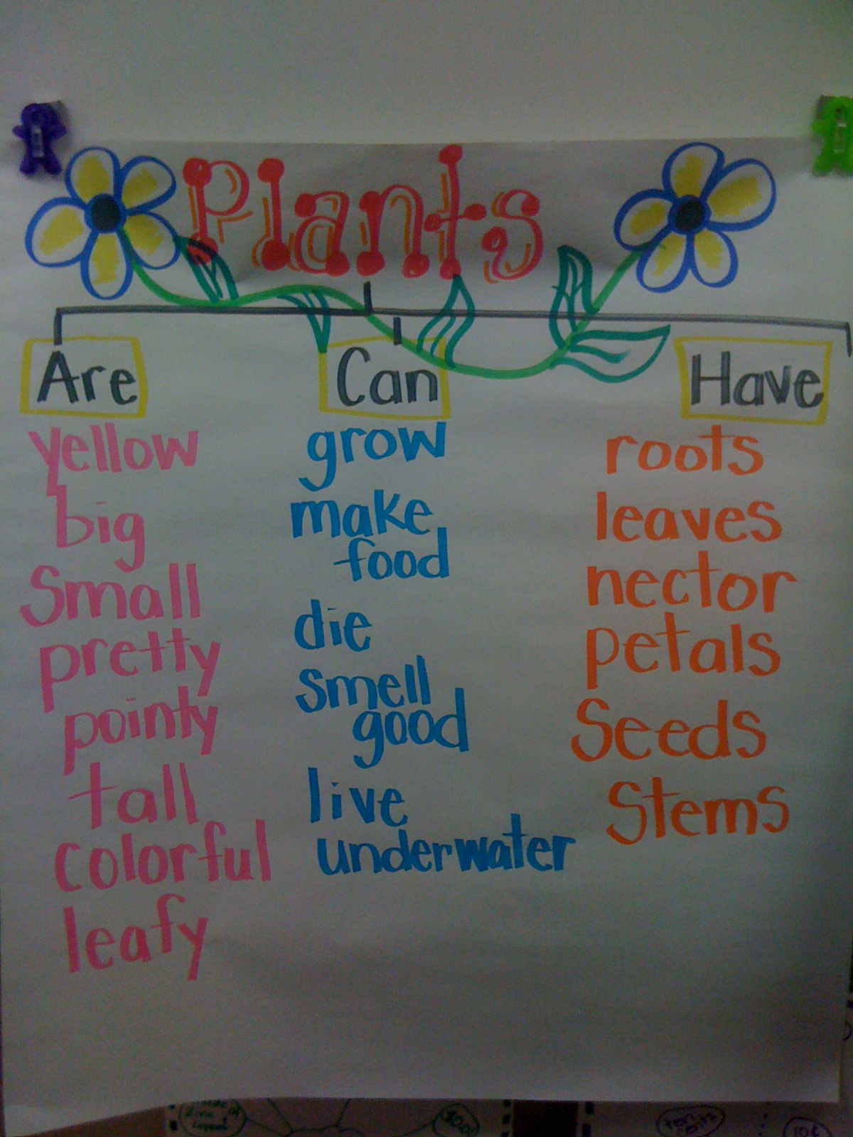 My first grade heart april 2012 my first grade heart robcynllc Gallery