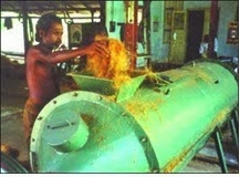 Extraction of coconut fiber.