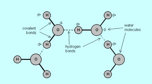 a solution that contains more hydrogen