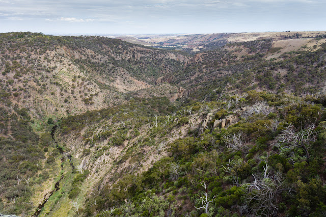 view of werribee gorge from falcons lookout