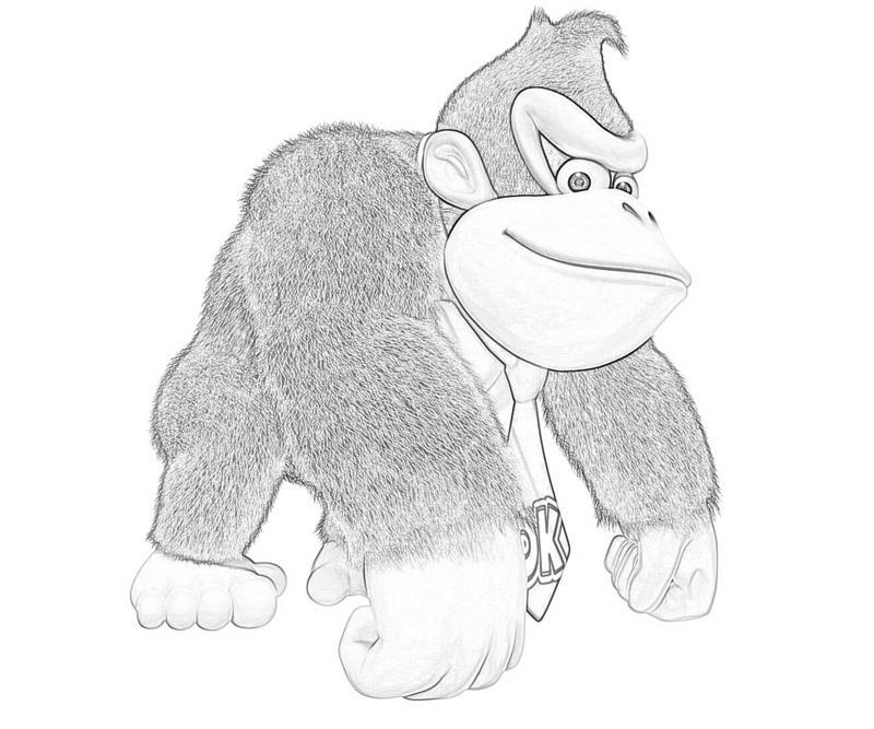Donkey Kong Country Returns Donkey Kong Athletic Mario
