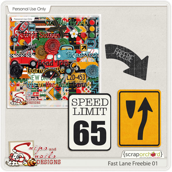 Fast Lane Pocket Card Freebie by Snips and Snails Designs