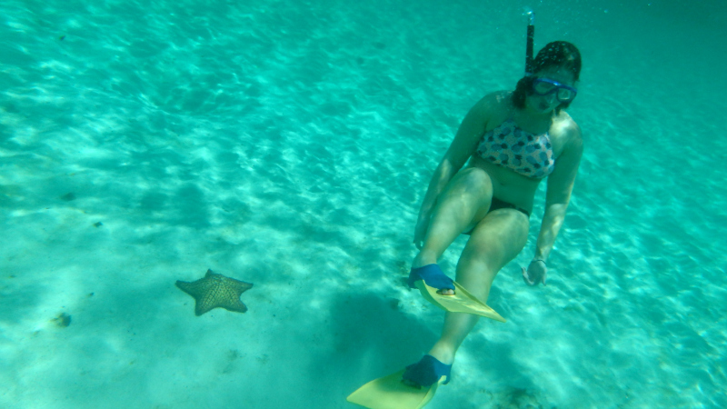 Underwater in The Tobago Cays Marine Park in The Grenadines