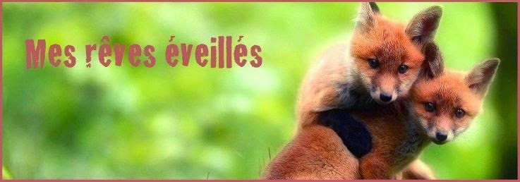 http://mes-reves-eveilles.blogspot.fr/2015/04/je-tinterdis-de-maimer.html