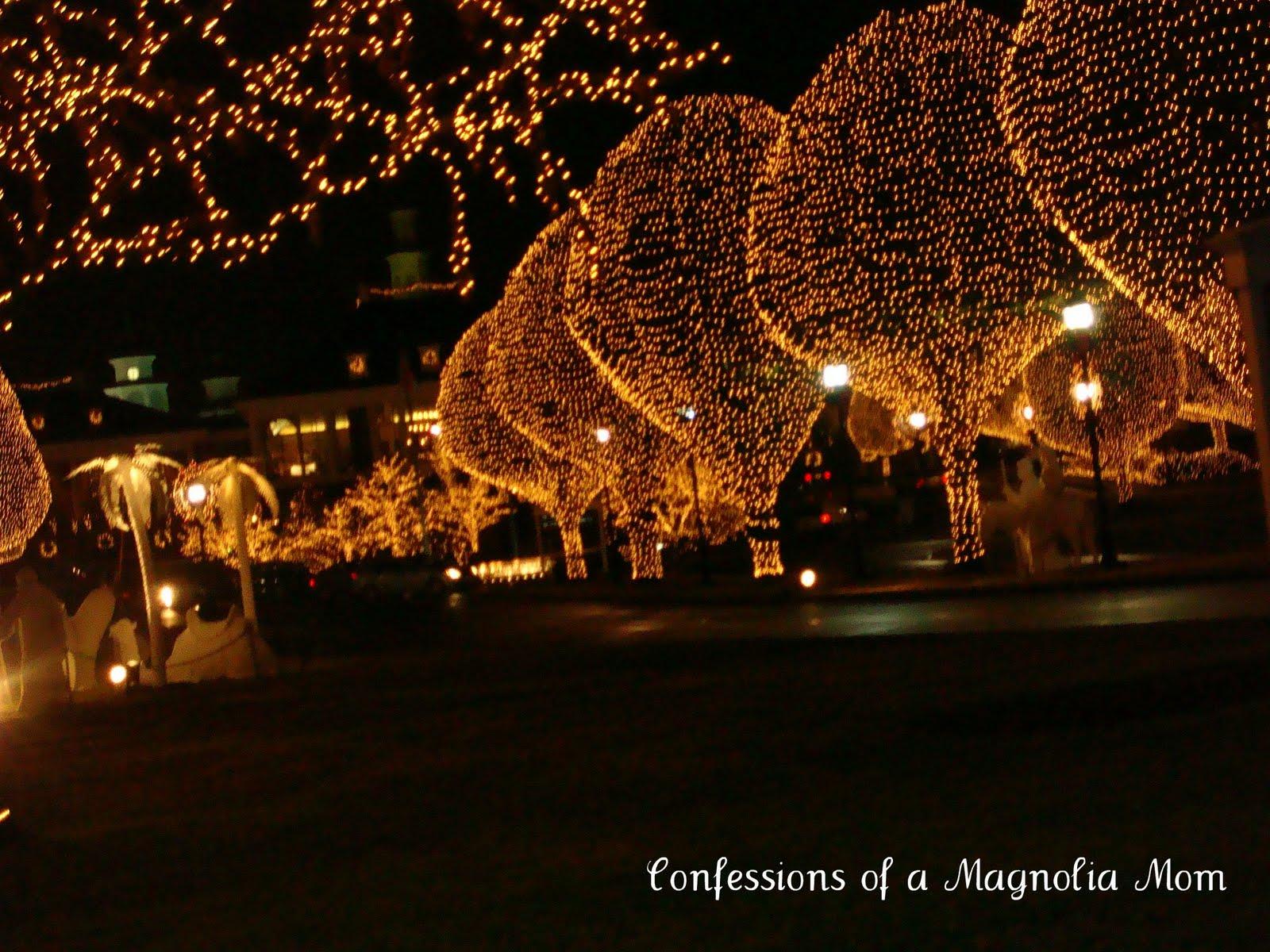 Magnolia Resort Hotel Katelios