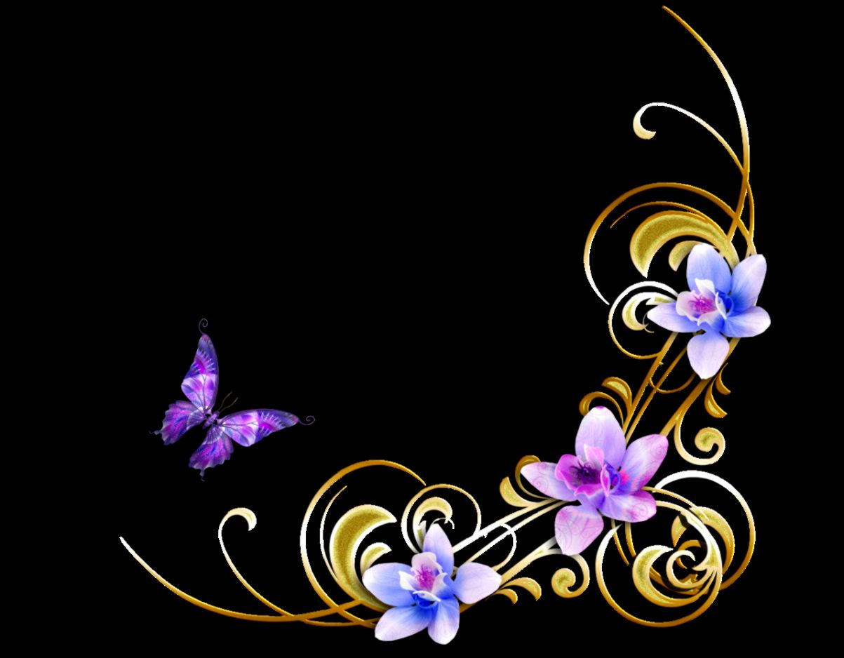 cute butterfly clipart wallpapers gallery