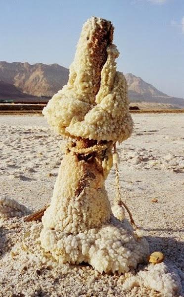 صور للبحر الميت Dead Sea amazing photo