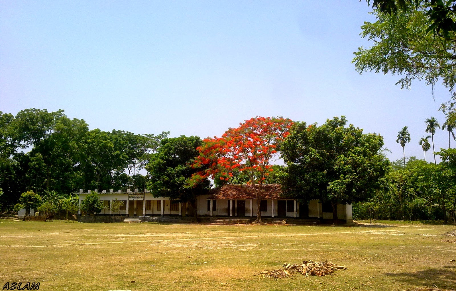 Mothbari primary school
