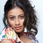 Telugu actress hasini photoshoot