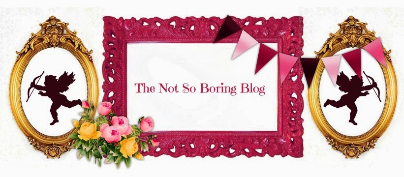 The Not So Boring Blog
