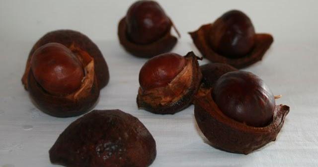 Las recetas de finuca octubre tiempo de casta as y - Castanas cocidas tiempo ...