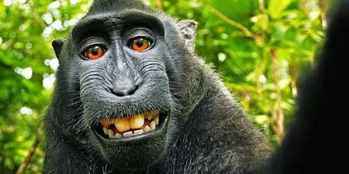 5 Foto Selfie Paling Kontroversial Di Dunia