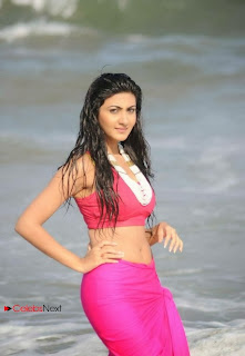 Actress Neelam Upadhyay  Wet Picture Gallery in Pink Bikini Top 0022.jpg