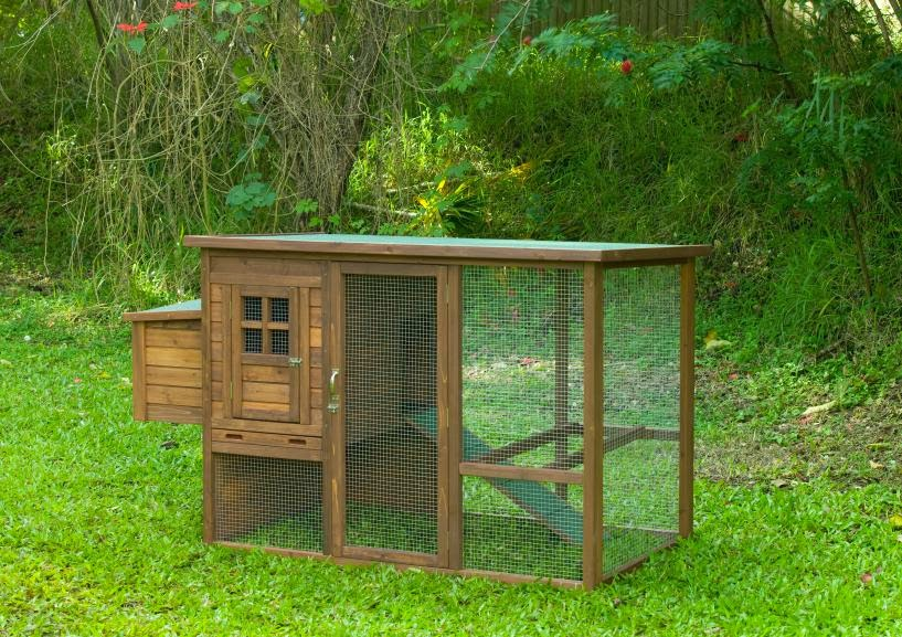 Chicken Coop Plans For 15 Chickens