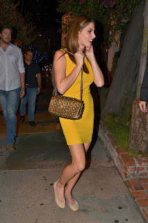 Ashley Greene  out for dinner