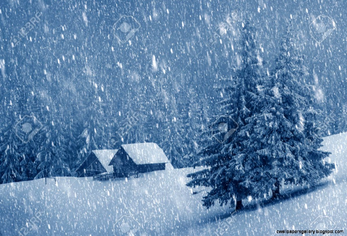 Wooden House In Winter Forest Stock Photo Picture And Royalty