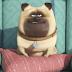 Divulgado o primeiro trailer dublado 'Pets – A Vida Secreta dos Bichos'
