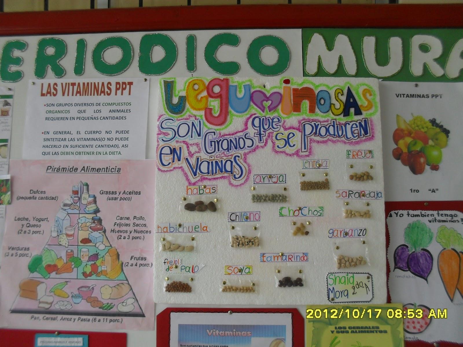 Unidad educativa ciudad de caracas semana de la salud y for Contenido del periodico mural
