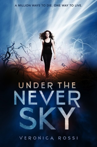 http://ssbookreviews.blogspot.com/2012/08/book-review-under-never-sky-book-1.html