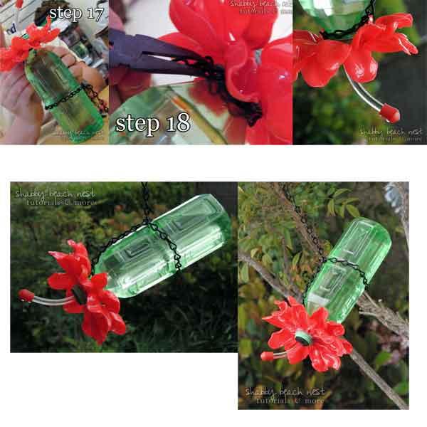 cara merawat kolibri ninja dengan wadah cantik nektar