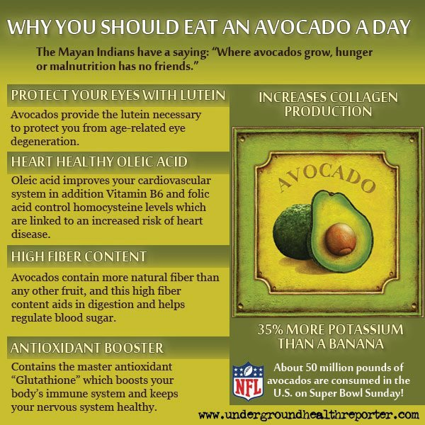 Flex Food - An Avocado A Day
