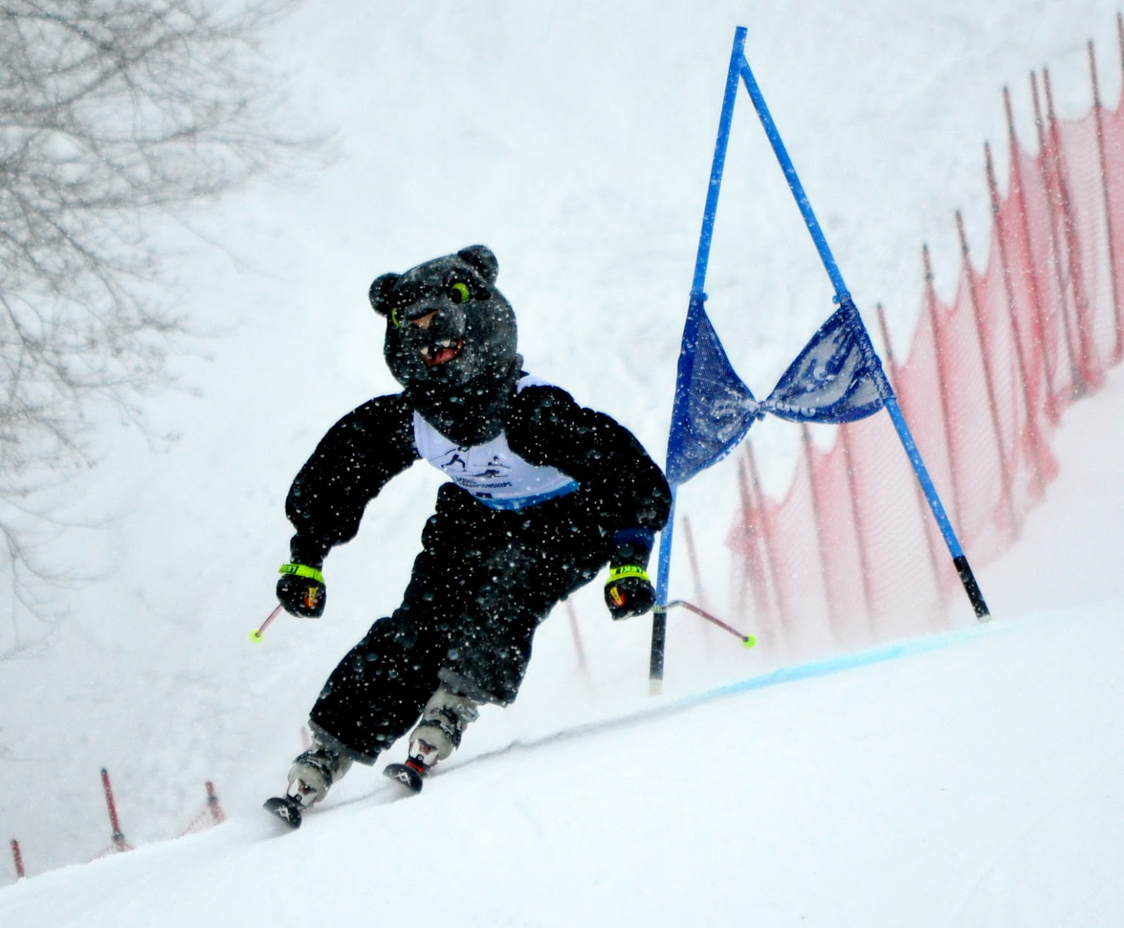 Alpine ski resorts plagued by lack of snow - Eisa Championships Day Two Recap