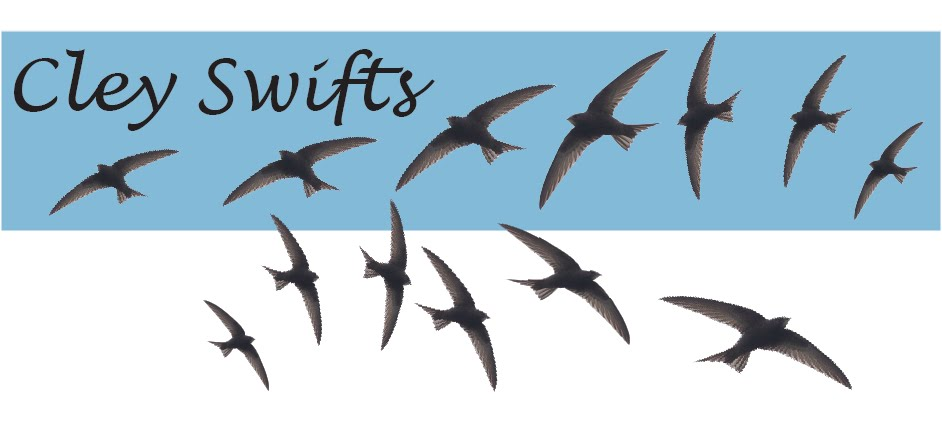 Cley Swifts
