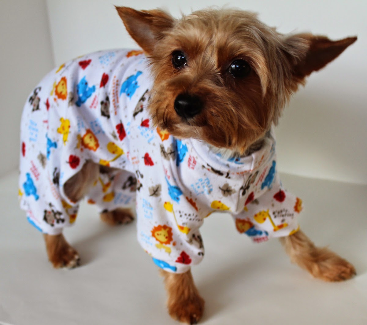 cute onesies / dog pajamas