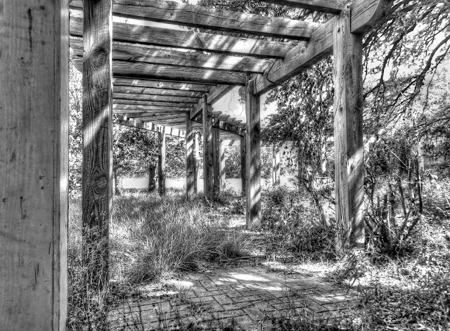 abandoned winery Pergola - Cedar Park Texas - Black and White