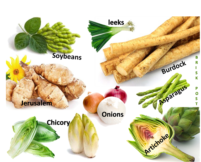 Fiber rich vegetables as carbohydrate rich food: Leaks, soybeans, jerusalem, chicory, onions, asparagus, artichoke, burdock