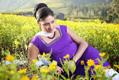 Hari priya photo shoot among yellow folwers-thumbnail-6